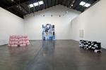 Installation view, Shoshana Wayne Gallery, 2010