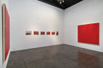 Transitional States, 2010; Installation View