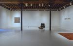 Rachel Lachowicz Rhona Hoffman Gallery 1993